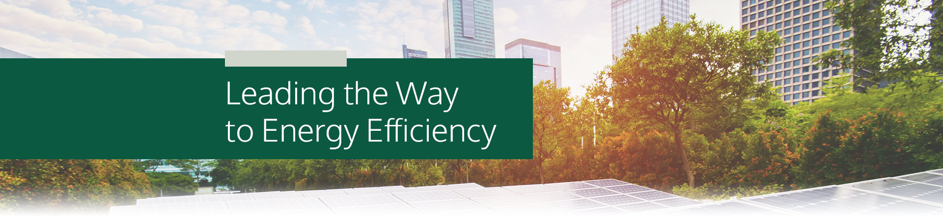 Energy Efficiency and Carbon Reduction